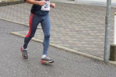 Heuschupfenlauf_2006-16