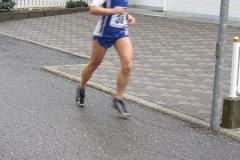 Heuschupfenlauf_2006-8