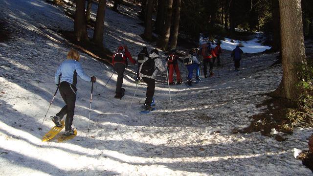 Schneeschuhe 2011